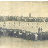 Kumpanija Vela Luka s početka XX stoljeća (iz arhive Jadranko Oreb)